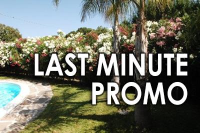 Last Minute Promo